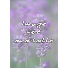 Lavender Heel Balm